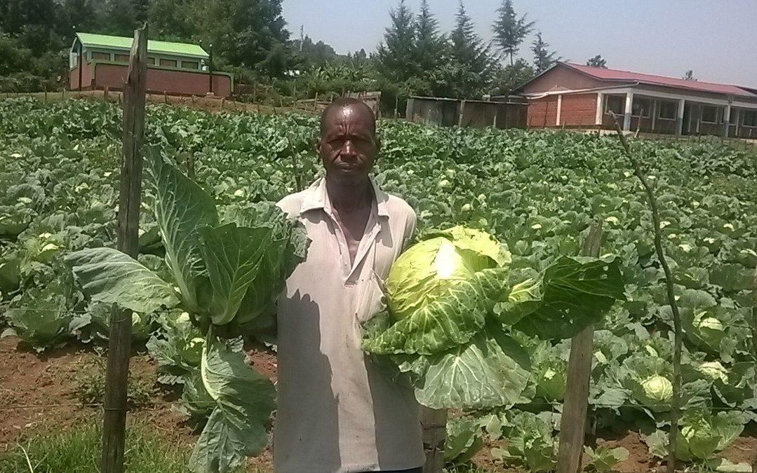KENYA: NDANAI: NDANAI SMALL HOME – GARDEN